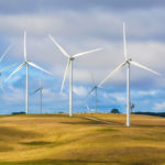 L'énergie éolienne et l'écologie : amies ou ennemies ?